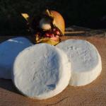 il Fiore Molle di Leonessa, è un formaggio fresco aromatizzato con lo zafferano della vicina Castelluccio di Norcia. Maggiori info su: https://it.wikipedia.org/wiki/Leonessa