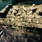 Antico Ponte Romano, emergente dal Fiume Velino - Ph: RietiTour.it
